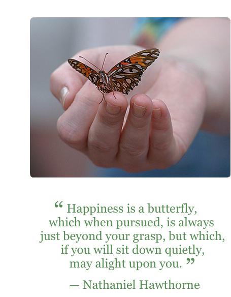 Insight Meditation Austin - Mariposa Sangha